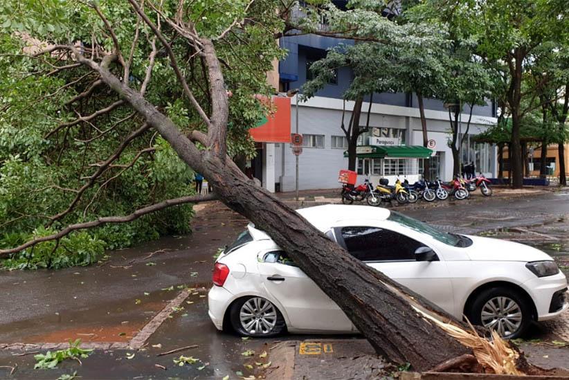 Temporal provoca estragos em Foz do Iguaçu e Serranópolis