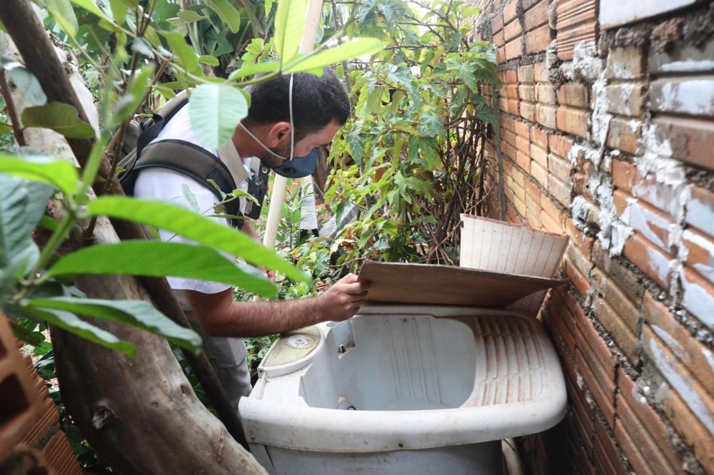 Dengue apresenta sinais de redução no Paraná, informa a Saúde