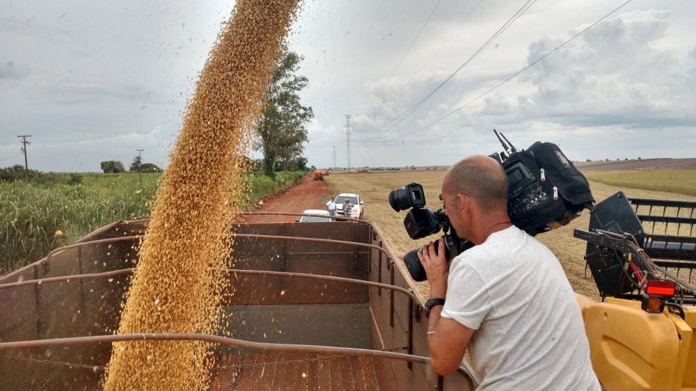 Pilar da balança comercial brasileira, as exportações do agronegócio podem cair em 2020